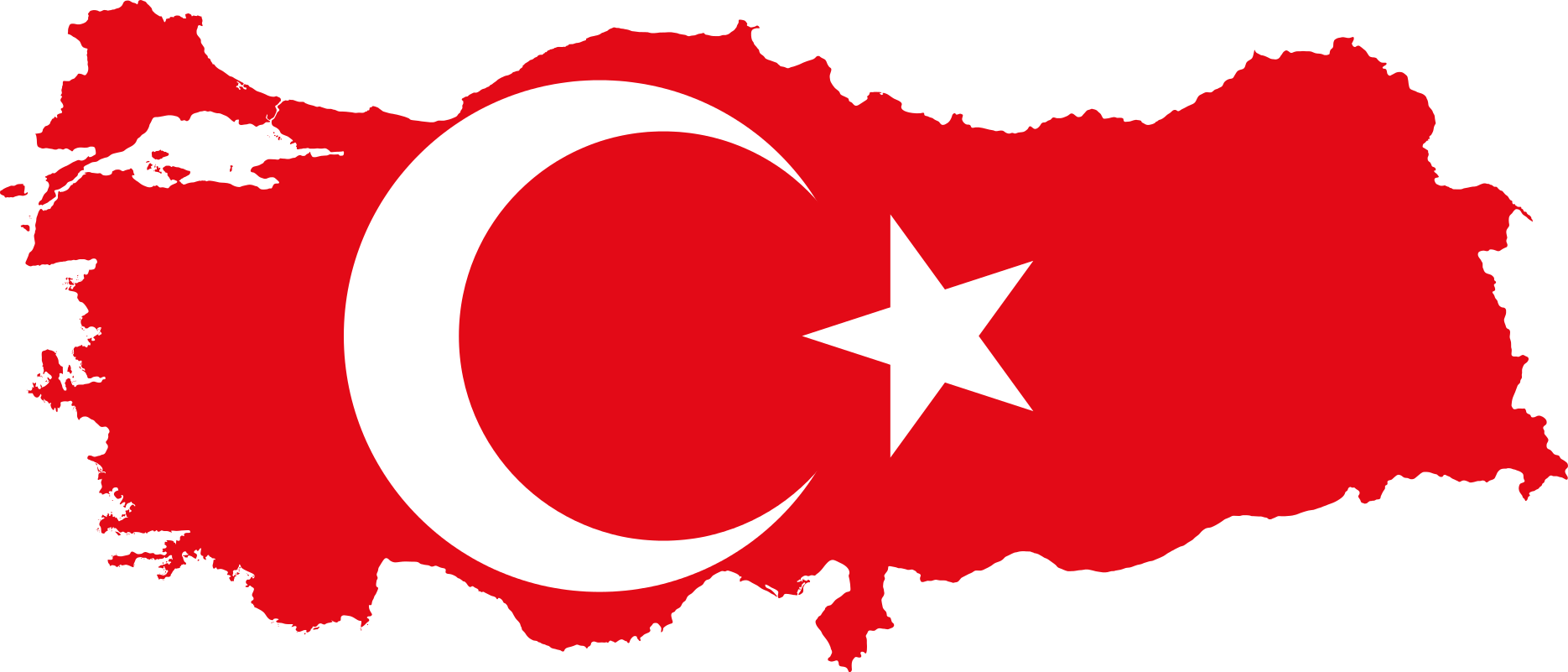 referendum in turchia